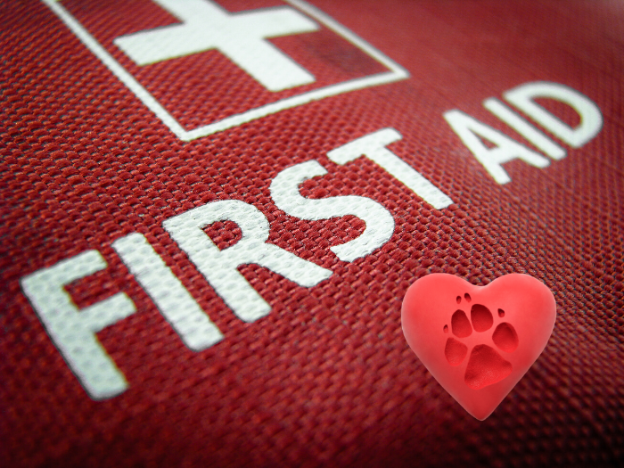 First aid cross on red background