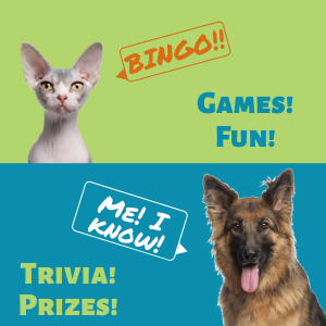 Fun at All Pet Game Night