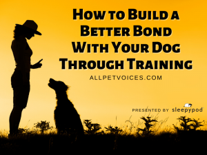 Woman Training Dog, How to Build A Better Bond with Your Dog Through Training, Presented by Sleepypod