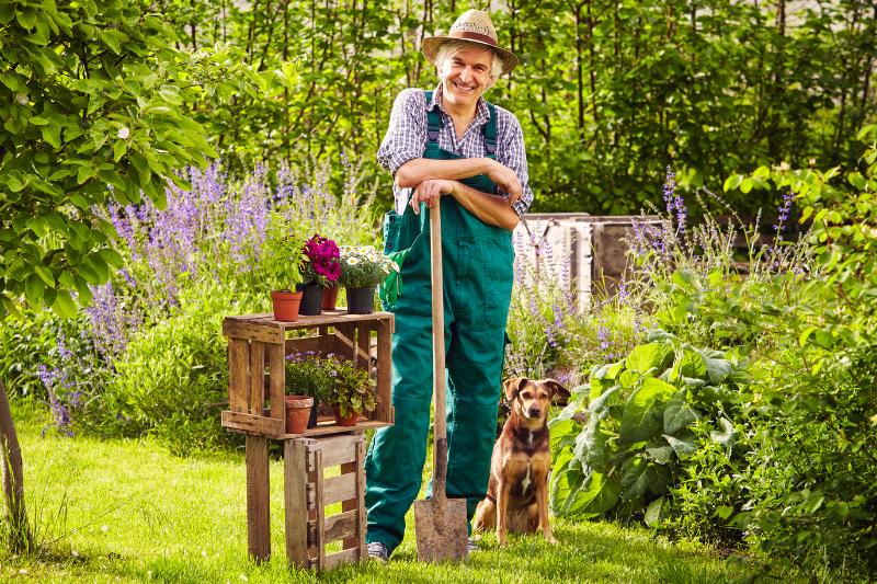 old man garden dog