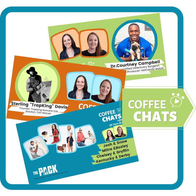 Coffee Chat thumbnail examples