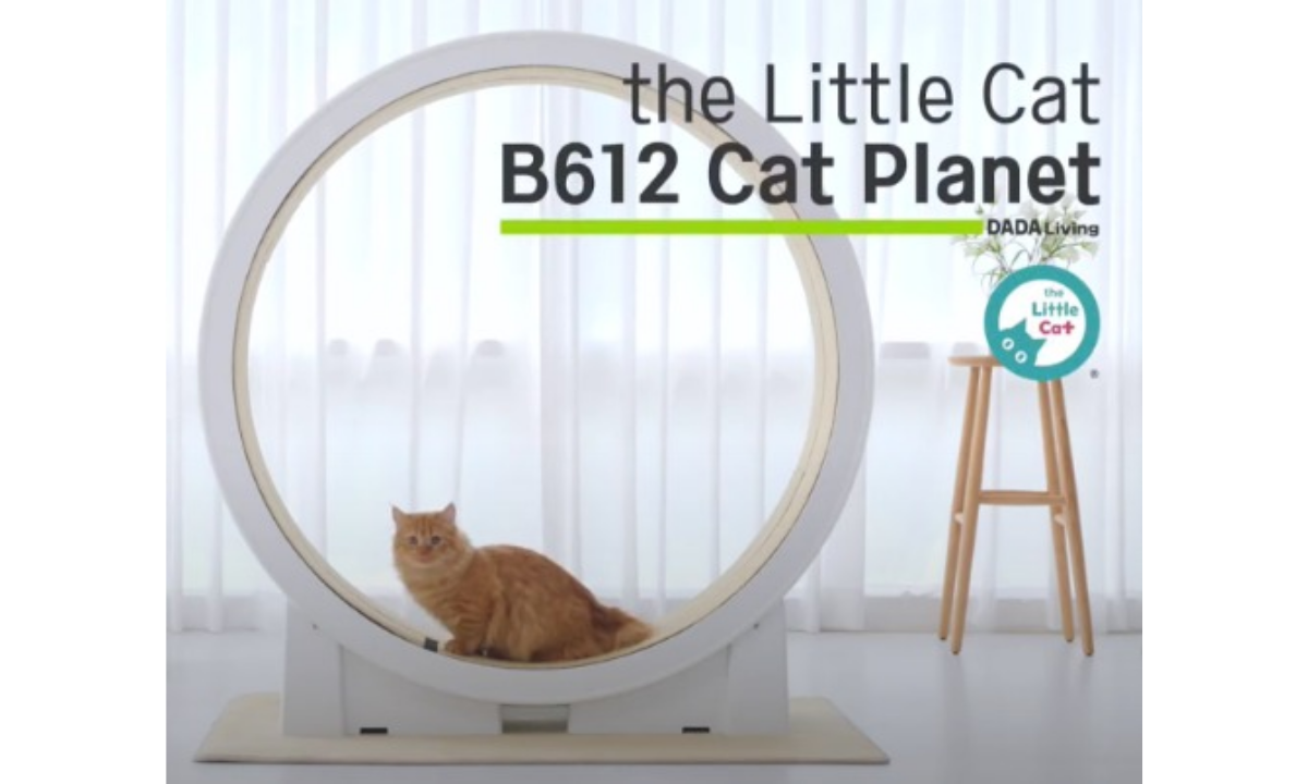 Smart Cat Exercise Wheel from The Little Cat