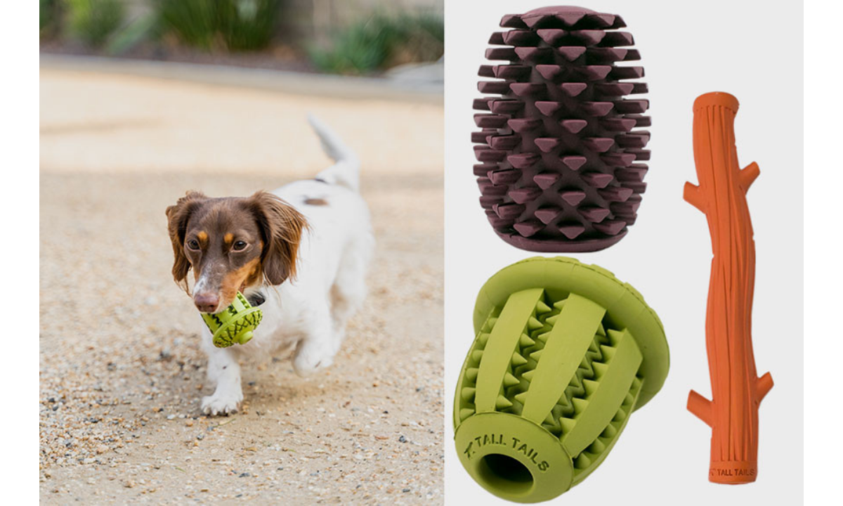 Tall Tails Pinecone Toothbrush toy for dog and dog carrying one