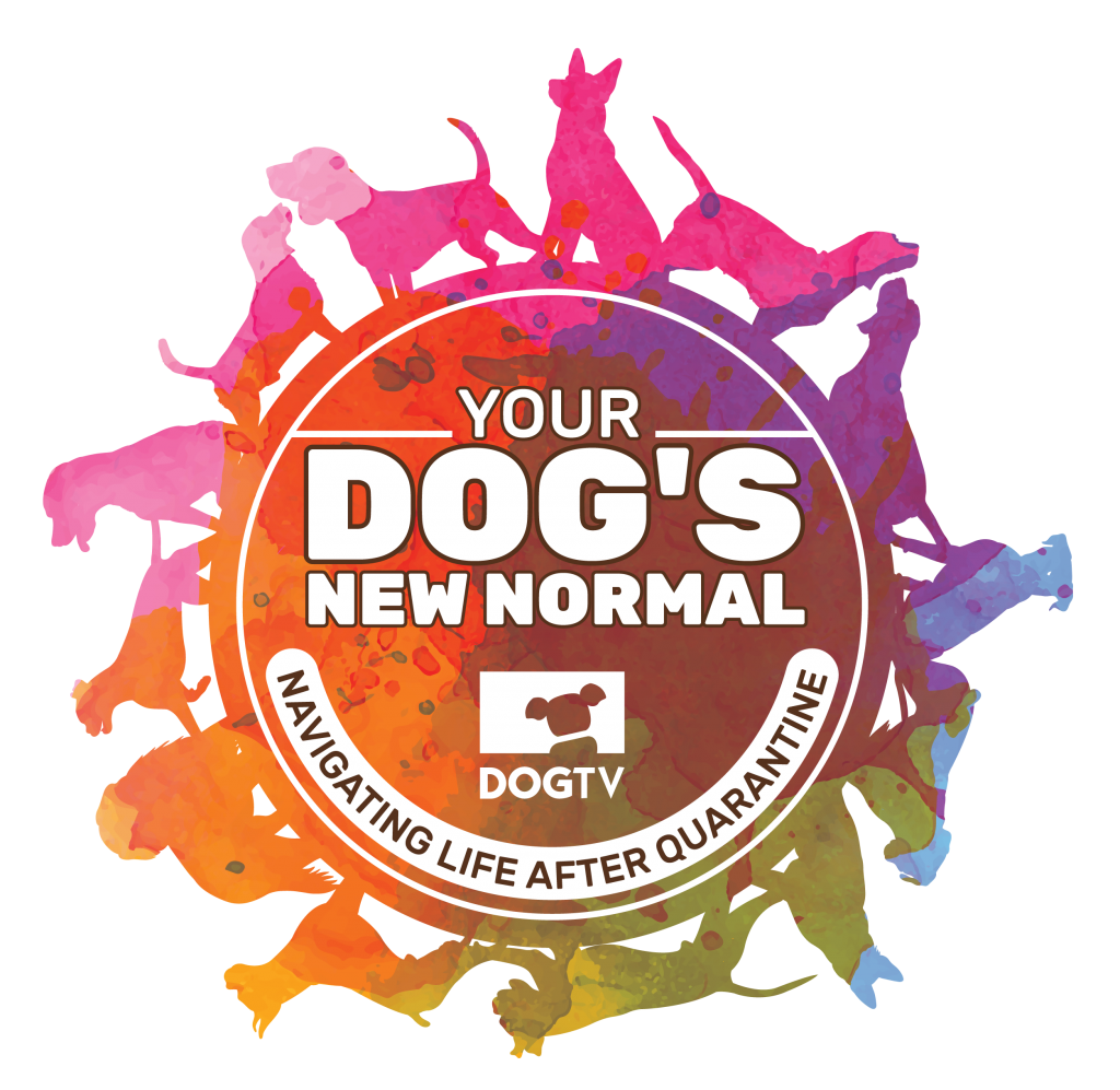 Your Dog's New Normal Event Logo