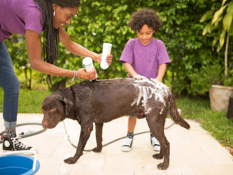 Mom and Boy Washing Dog