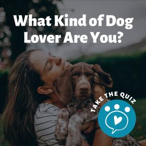 Dog Lover Sidebar Ad