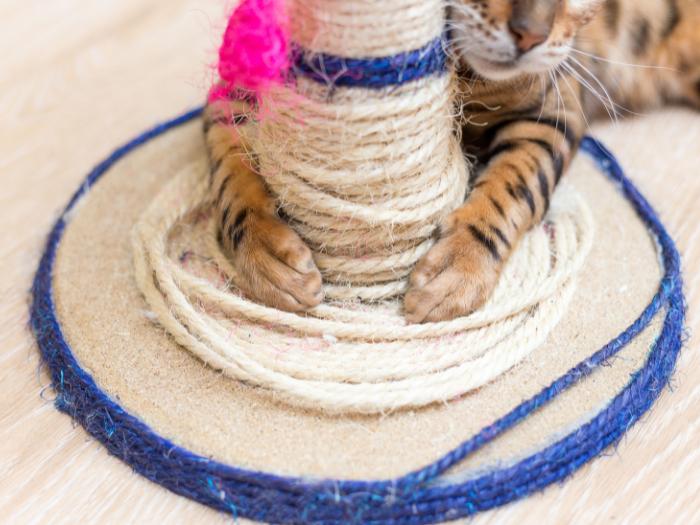 diy rope cat scratcher